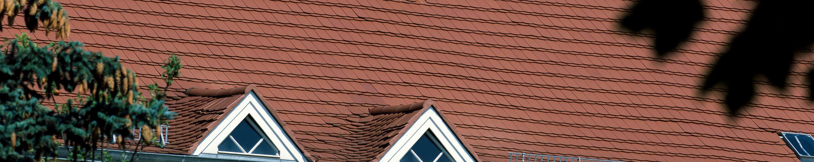 PROFIL Saxony plain tile natural red
